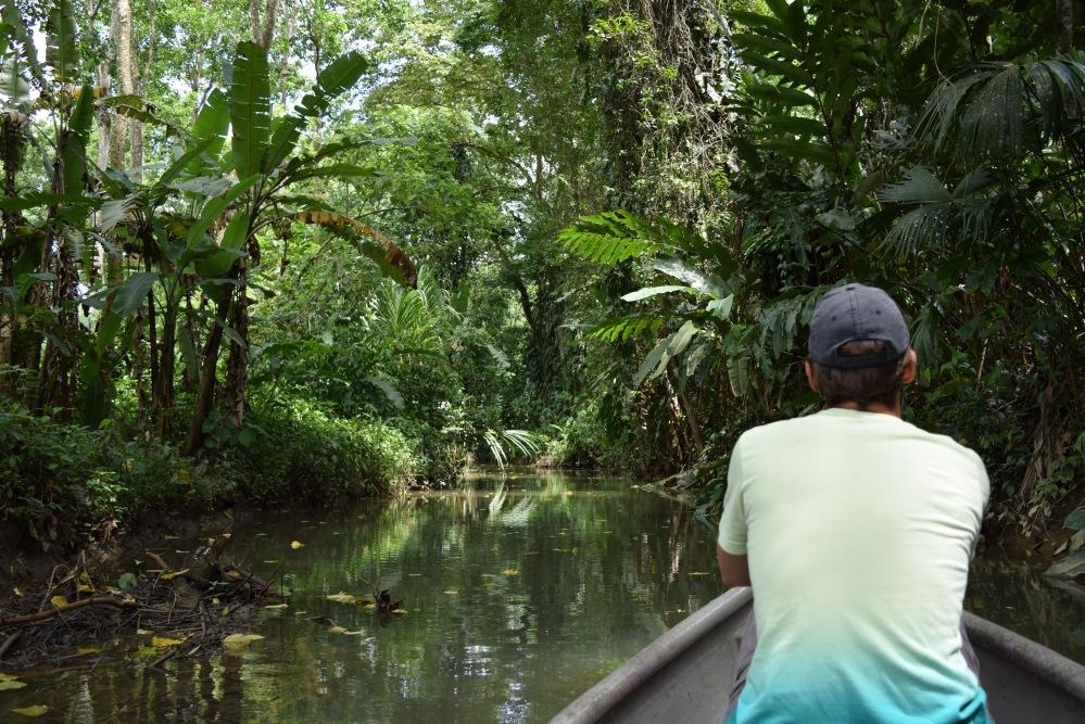 Roślinność na Kostaryce